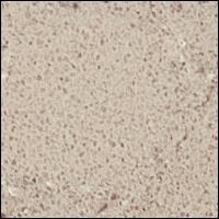 Caesarstone Shitake Pattern